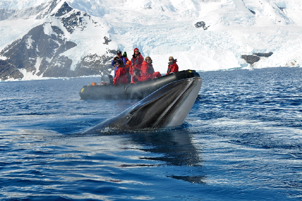 vacanze in catamarano con skipper Antartico